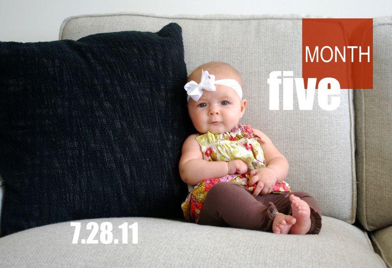 5 Months 044-1